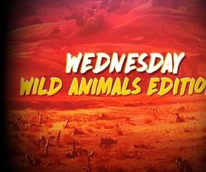 Daily Treats: Κάθε Τετάρτη | Wednesday Thrills: Wild Animal Edition